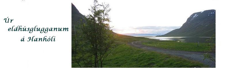 Guðrún Stella Gissurardóttir - Hausmynd